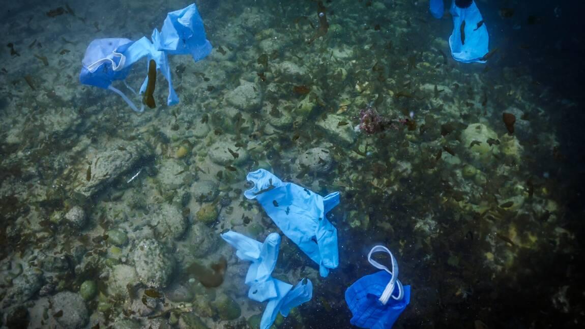 Des gants et des masques dans sept grands fleuves européens, alerte la Fondation Tara