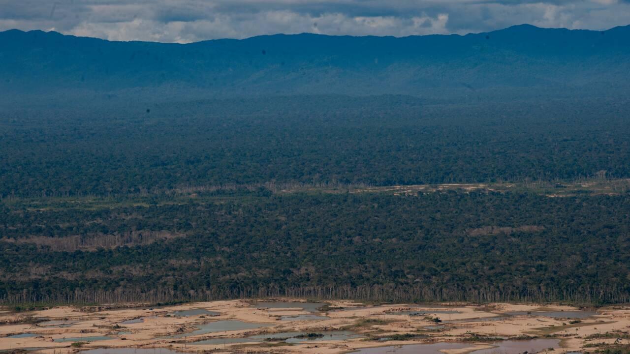 Brésil: Bolsonaro sous pression pour préserver l'Amazonie