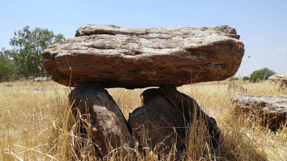 Dans le Golan, des gravures d'animaux vieilles de plus de 4 000 ans retrouvées sur un dolmen