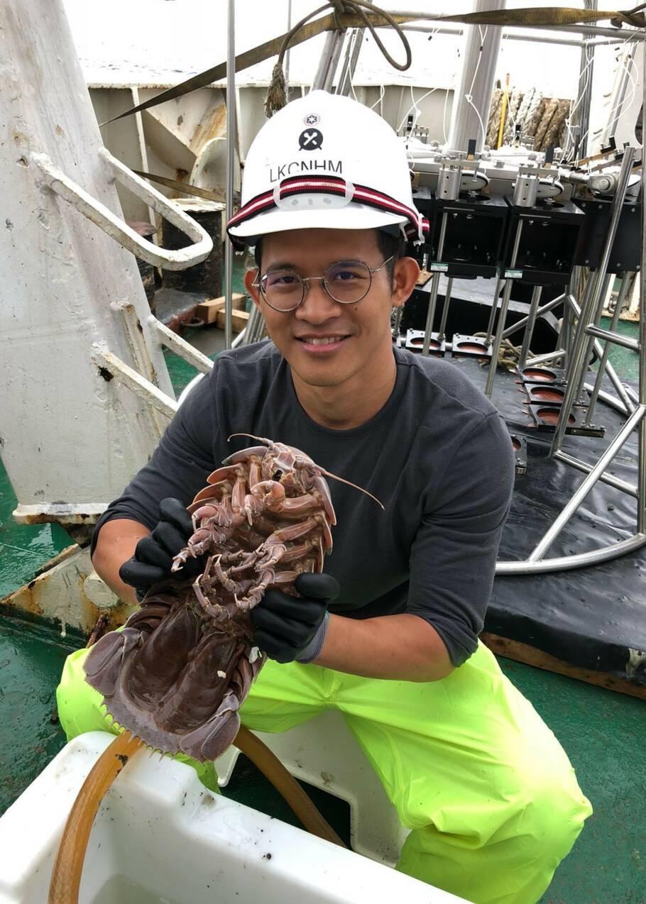 """Le """"Dark Vador des mers"""" : découverte d'une nouvelle espèce """"supergéante"""" en Indonésie"""