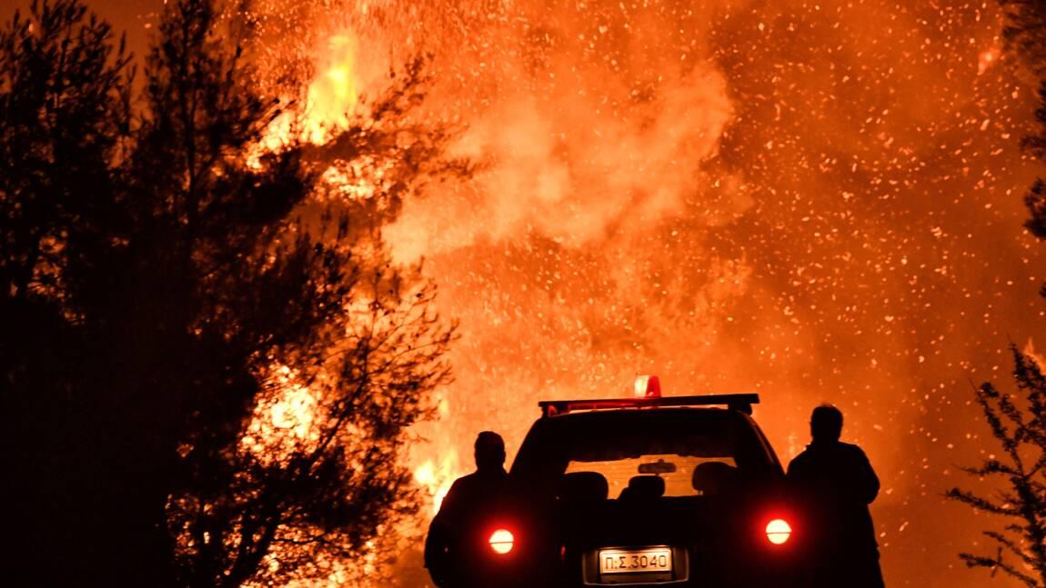 En Grèce, les pompiers luttent contre un violent incendie de forêt