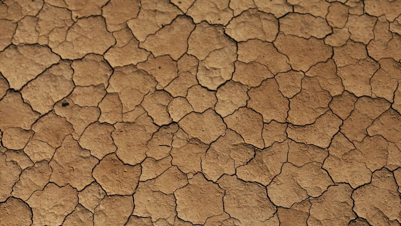 Sécheresse : ce mois de juillet aura été le plus sec en France depuis 60 ans
