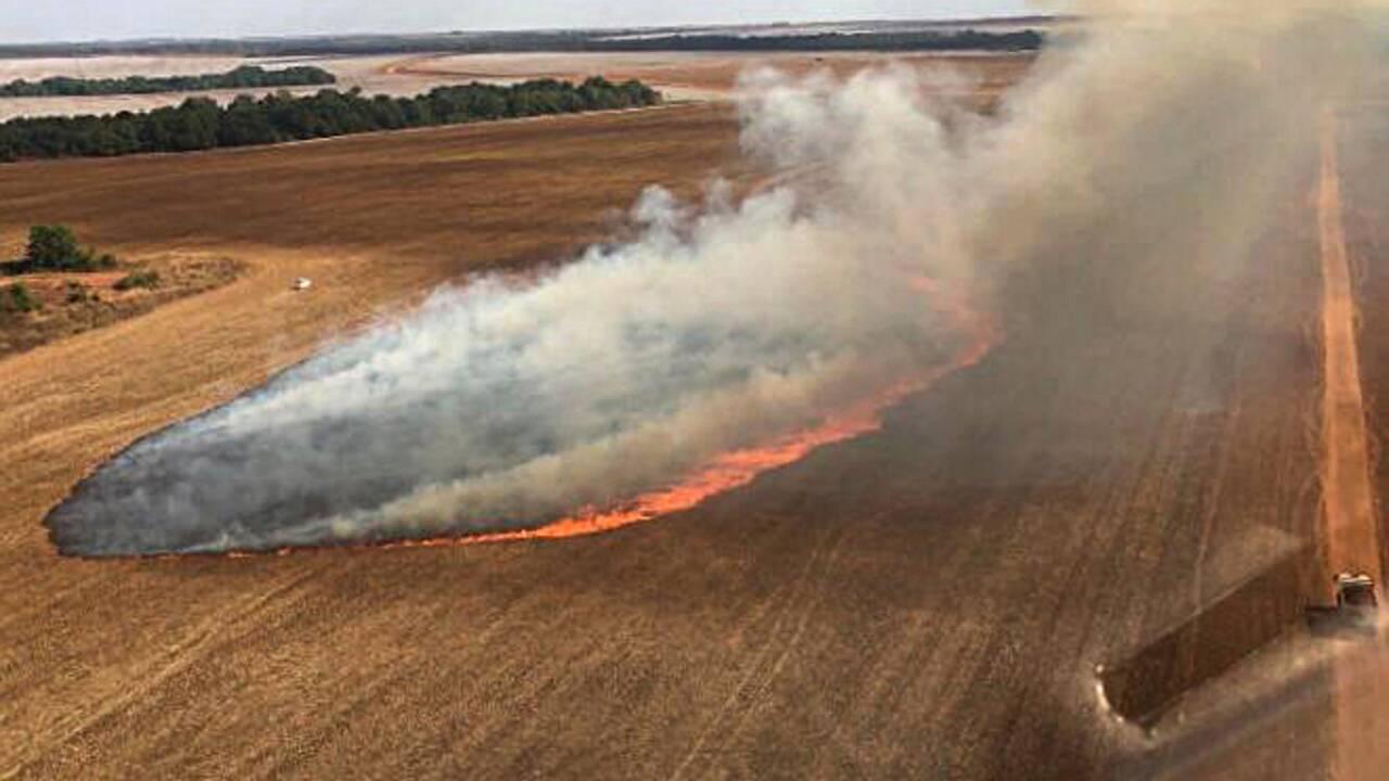 Brésil: les pompiers dans l'enfer des incendies au Pantanal