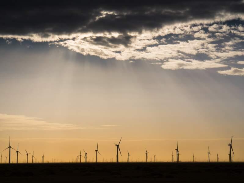 """Catégorie """"Écologie du paysage et écosystèmes"""" - Parc éolien dans le désert de Gobi"""