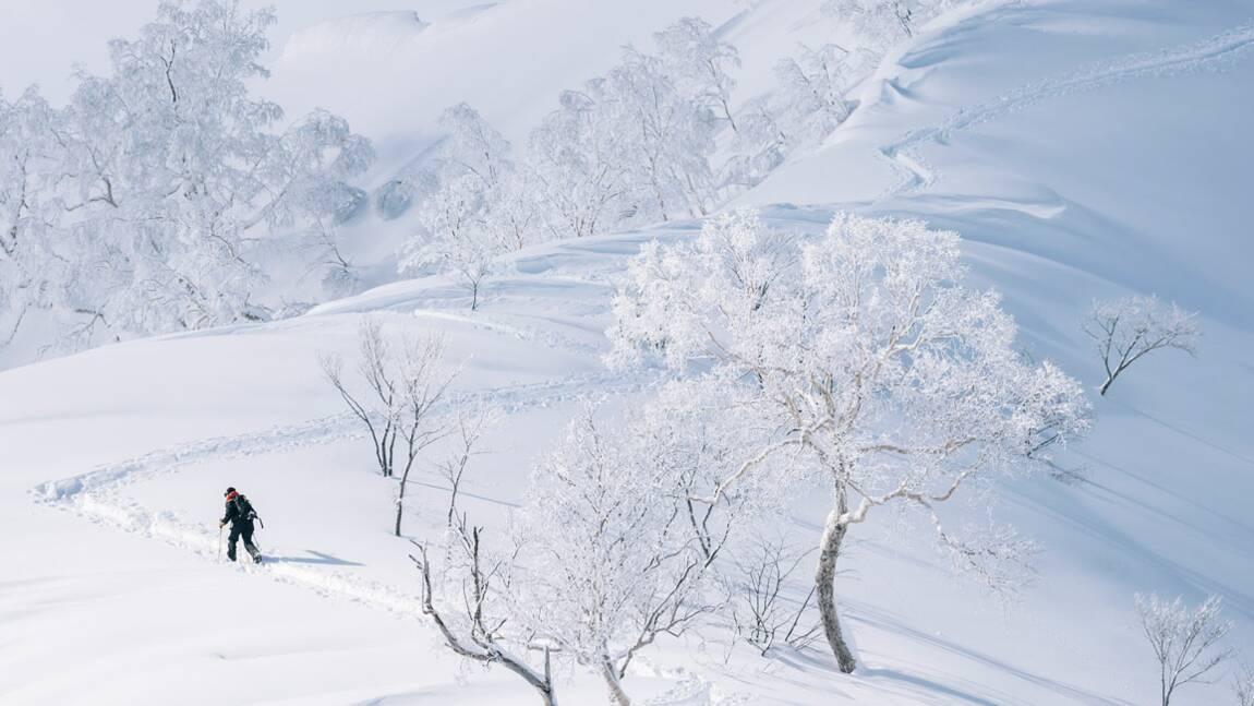 Immersion au Japon, paradis blanc pour les passionnés de ski