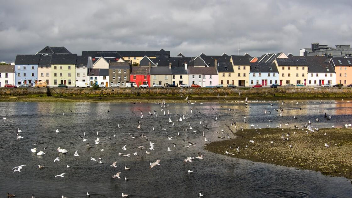 Irlande : les dix coups de cœur de notre reporter