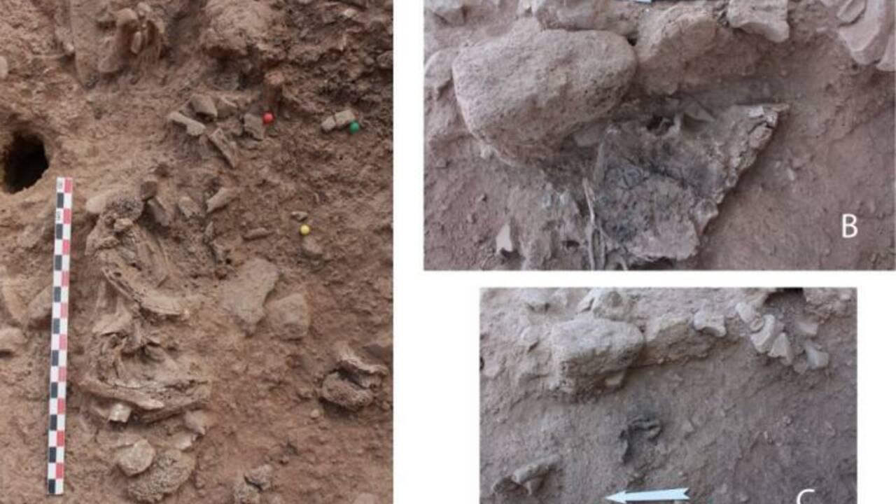 Au Proche-Orient, des restes humains attestent de la pratique de la crémation il y a 9000 ans