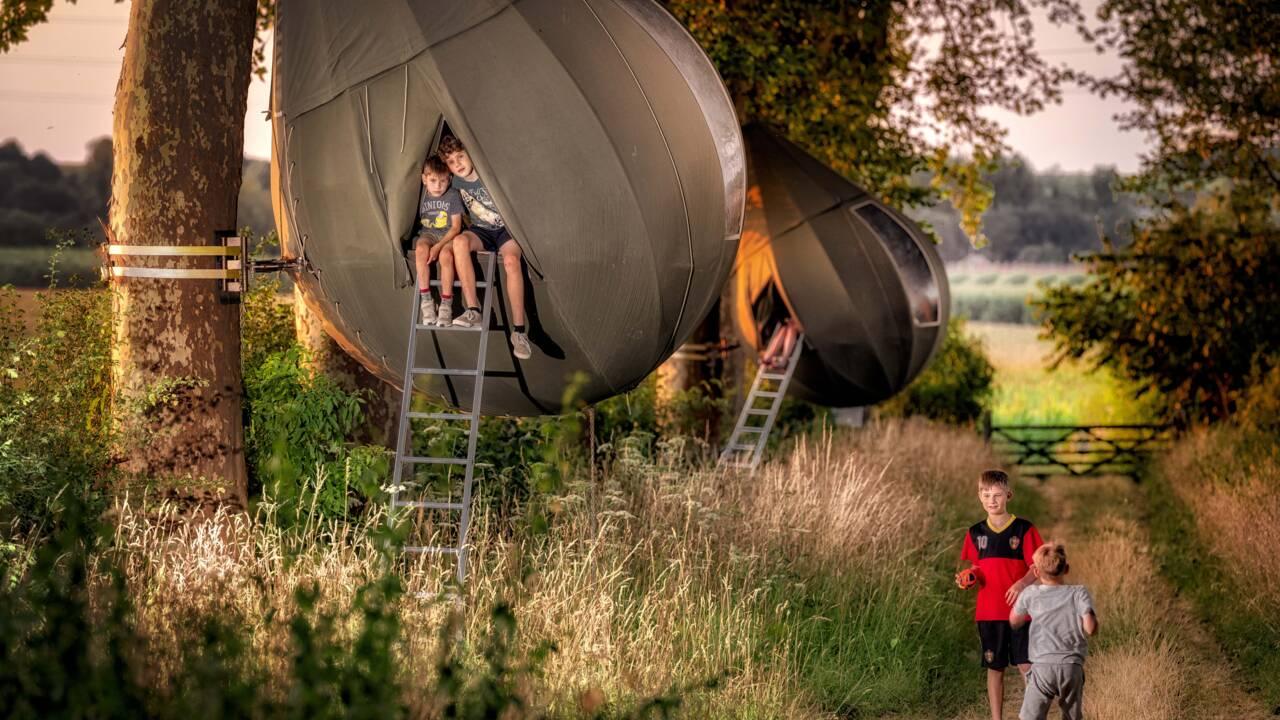 En Belgique, dormez suspendu aux arbres grâce à ces tentes en forme de larme