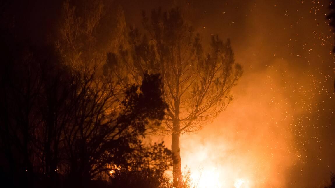 Vaucluse: incendie fixé, 130 hectares brûlés