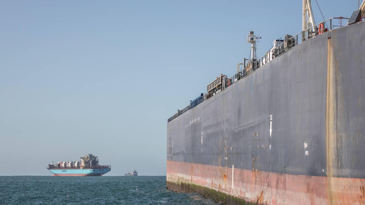 La tranquillité des manchots africains menacée par le ravitaillement en mer des bateaux