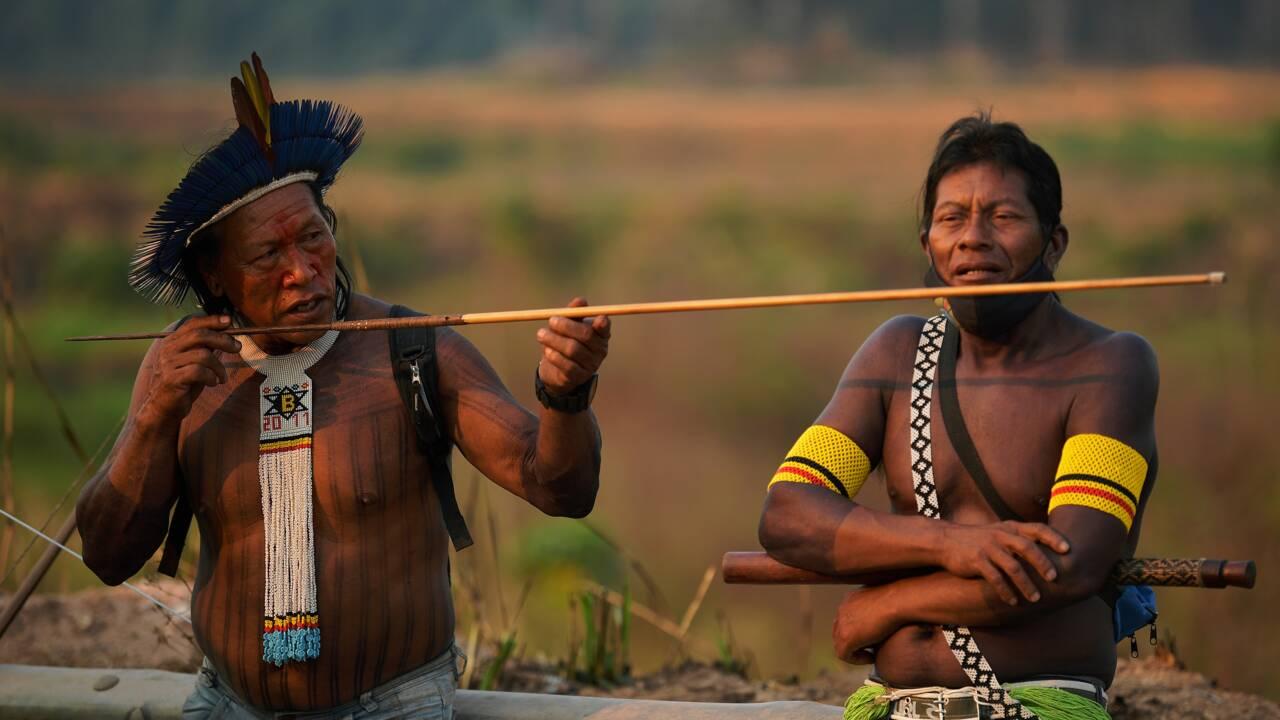 En Amazonie, déforestation et impunité attisent les feux
