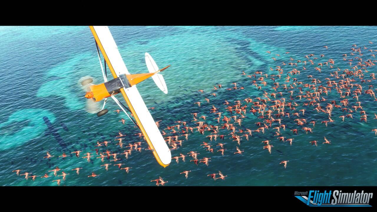 Avec Flight Simulator 2020, voyagez jusqu'au bout du monde sans bouger de chez vous