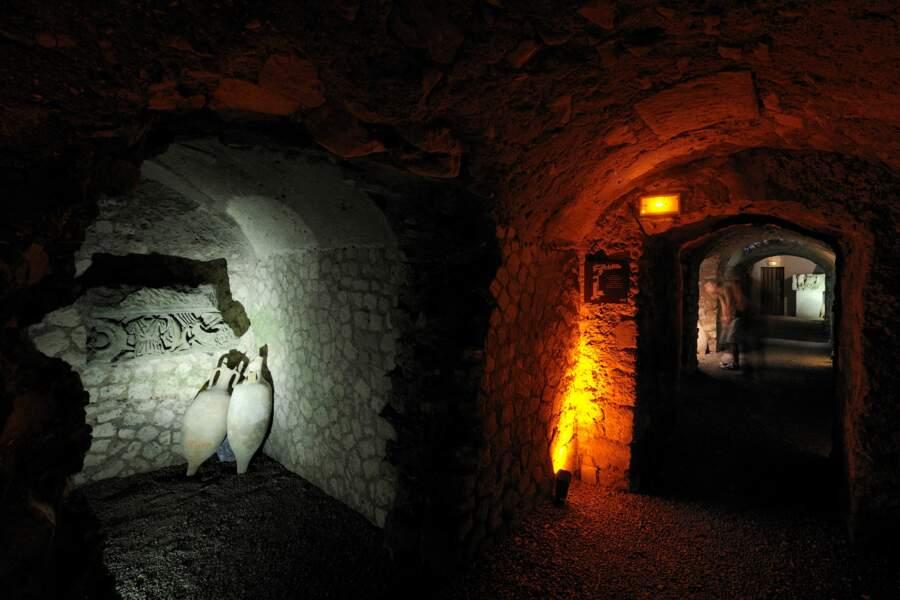 Horreum à Narbonne, un labyrinthe souterrain faisait office de cave à vin (1er siècle)