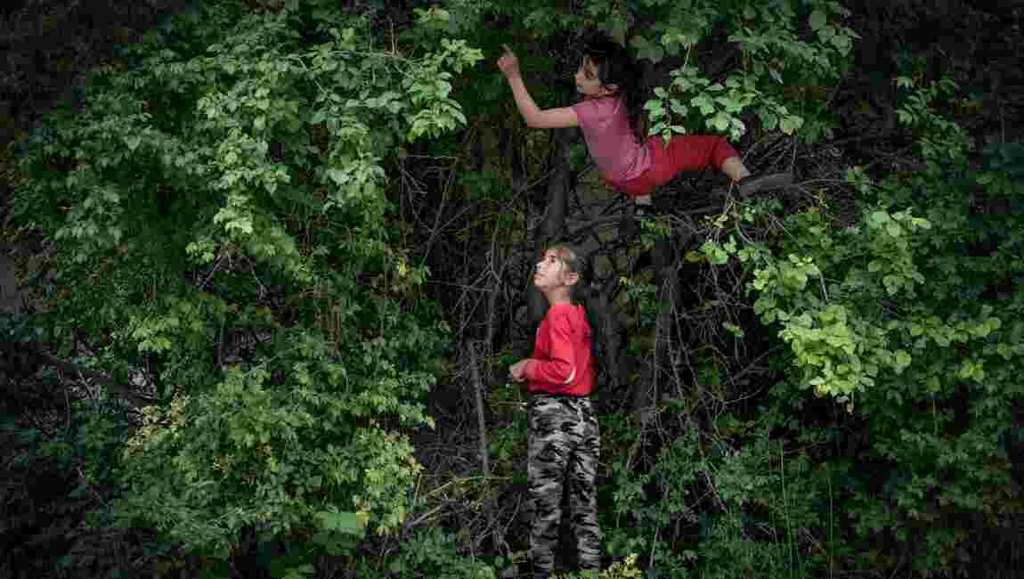 Visa pour l'image 2020 : que voir au festival international de photojournalisme de Perpignan ?