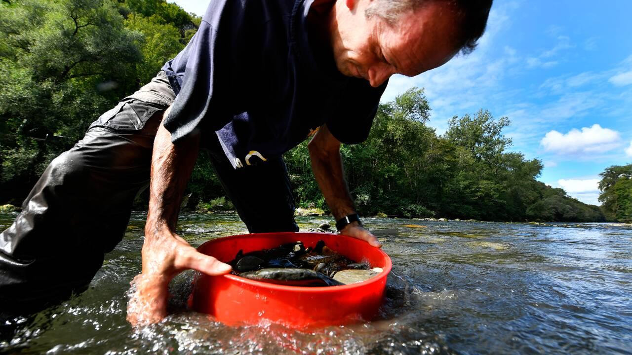En Ariège, le dernier refuge des chercheurs d'or