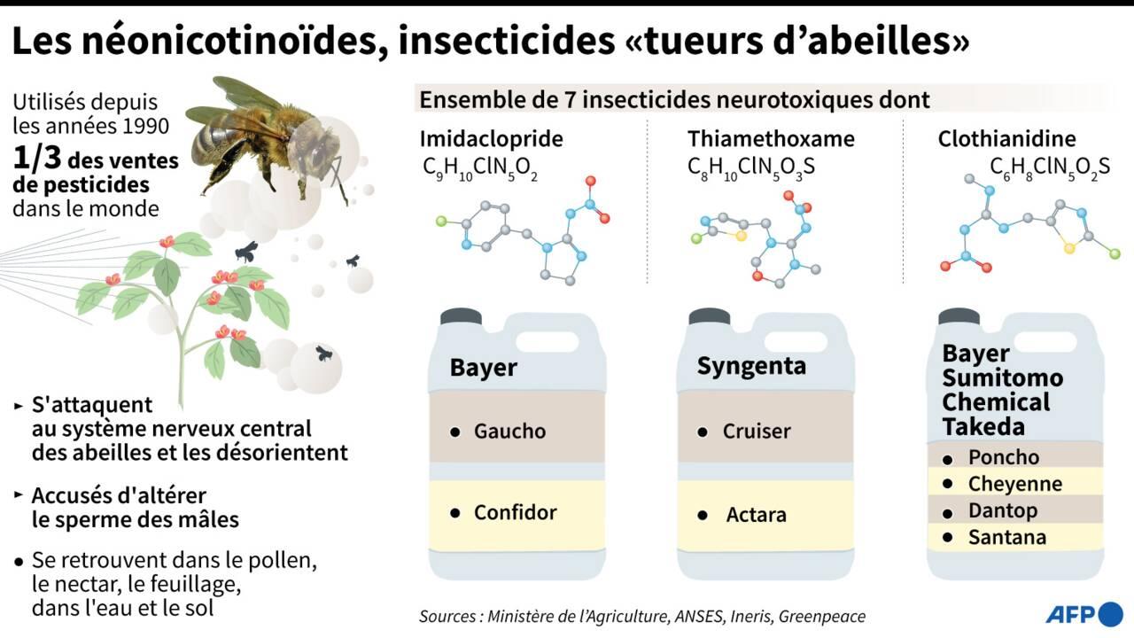 Néonicotinoïdes: gages de transition des producteurs et scientifiques, l'opposition s'organise