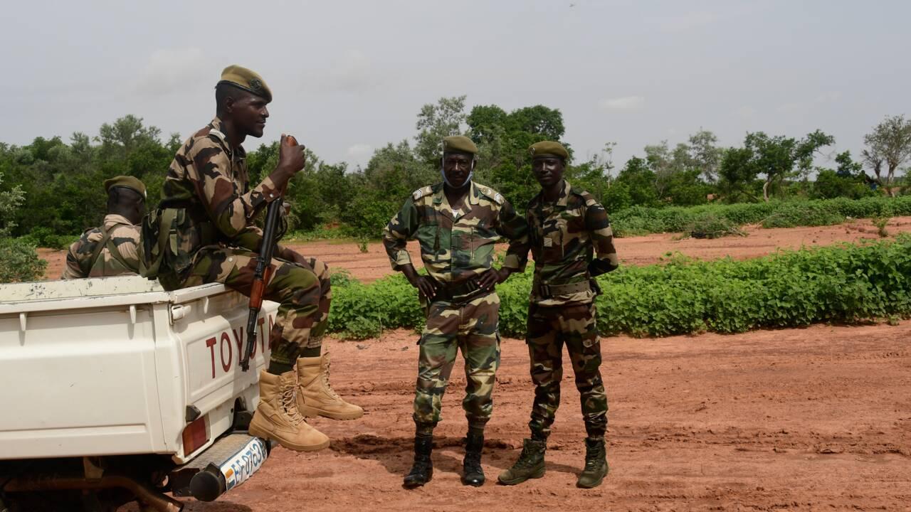 Niger : la réserve des girafes menacée, après une attaque jihadiste
