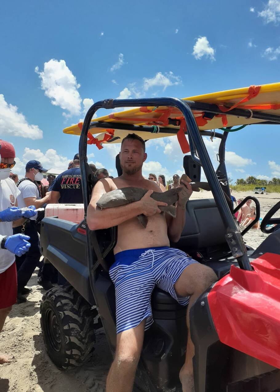 Floride : provoqué, ce requin attaque et ne lâche plus le bras de ce nageur