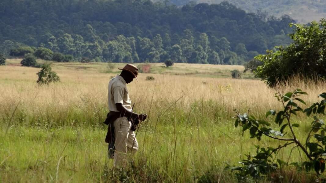 La réserve de Mlilwane