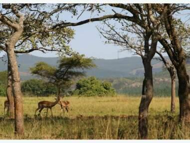 Les plus belles photos du Swaziland par la Communauté GEO