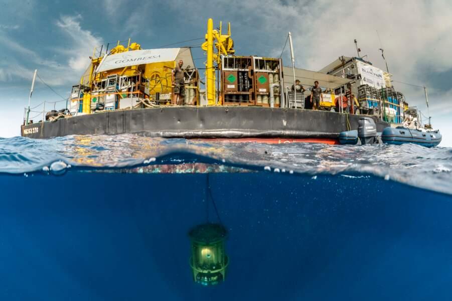 Plongée sous la surface méditerranéenne