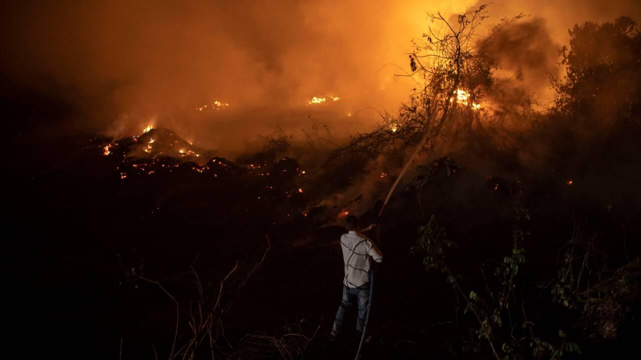 Brésil: stupeur et désolation dans un Pantanal dévoré par les flammes