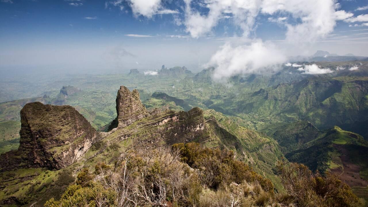 """Les parcs naturels africains au cœur d'un """"colonialisme vert"""", selon un historien"""