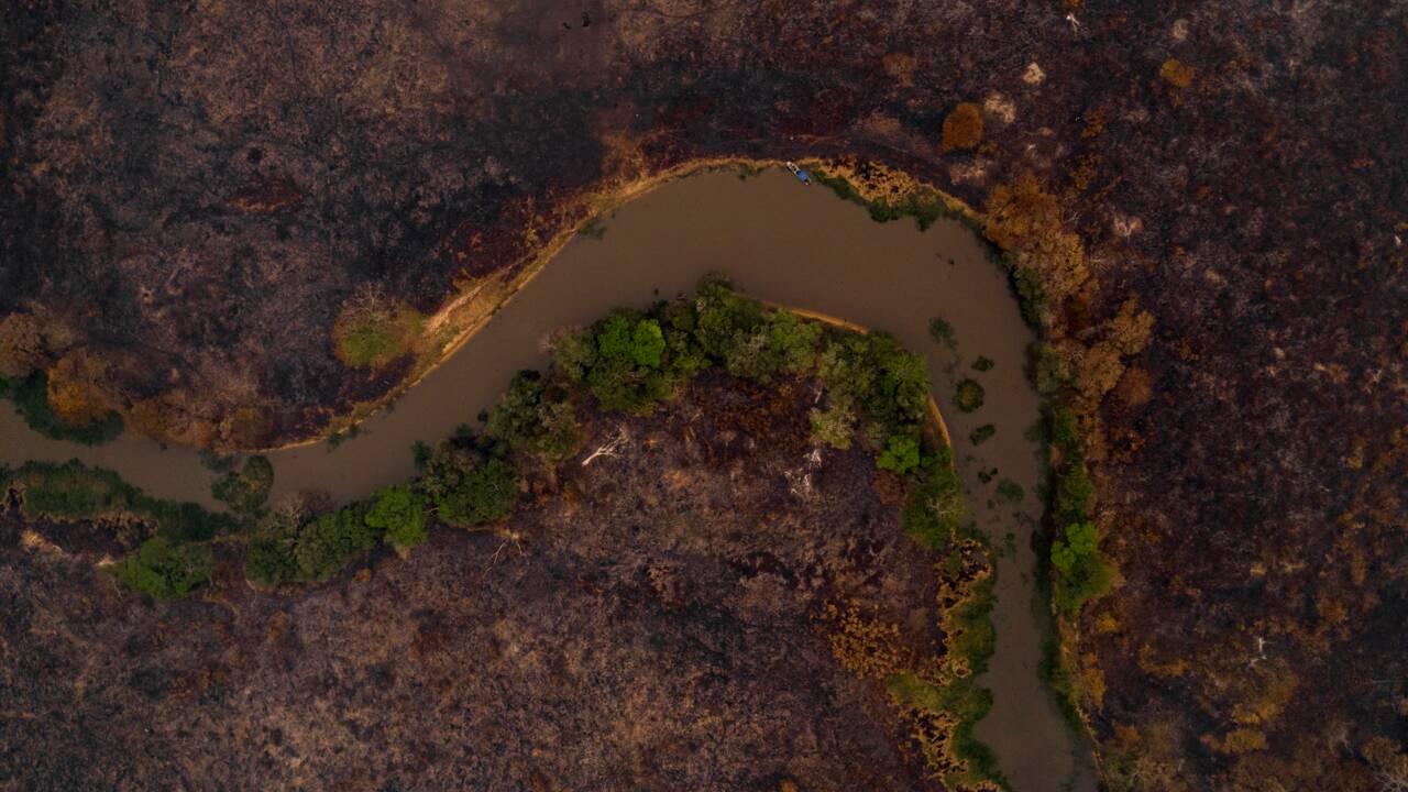 Brésil : un écrin d'écotourisme réduit en cendres au Pantanal
