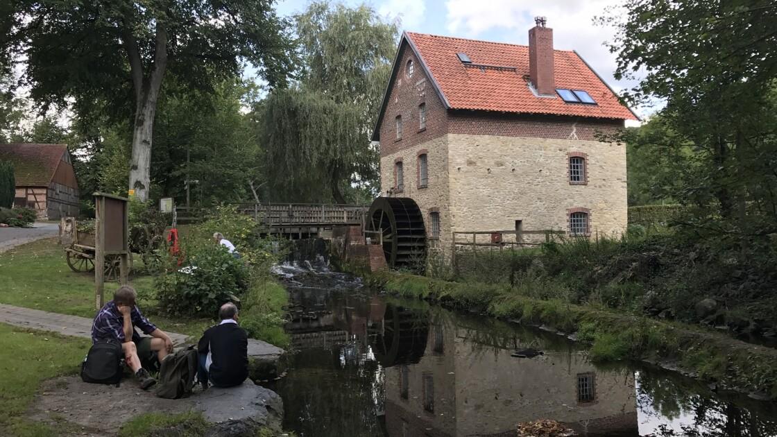Les moulins à eau, un patrimoine menacé de disparition pour préserver les poissons ?
