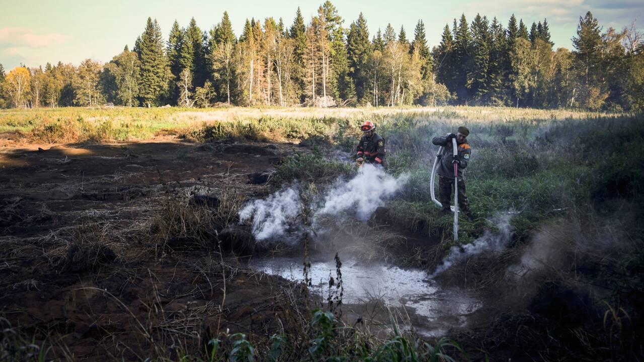 """En Sibérie, des feux """"zombies"""" attisés par le changement climatique"""