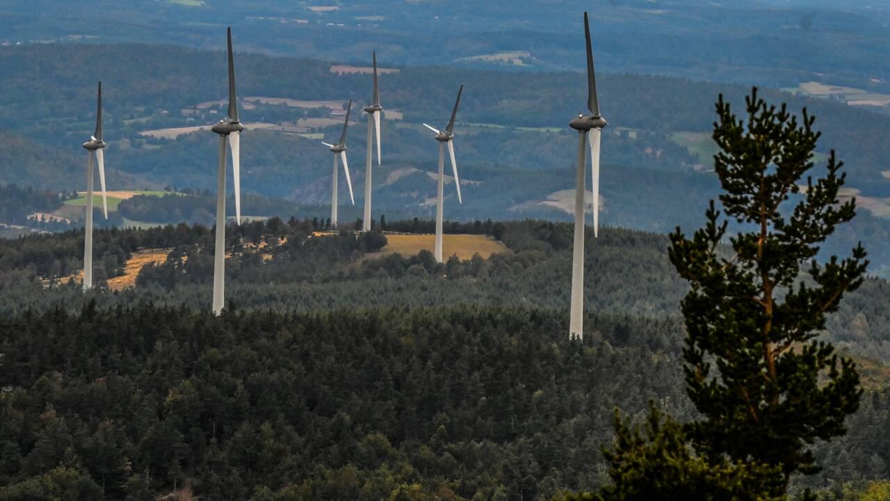 """L'énergie renouvelable a """"mieux résisté"""" à la pandémie que le nucléaire"""
