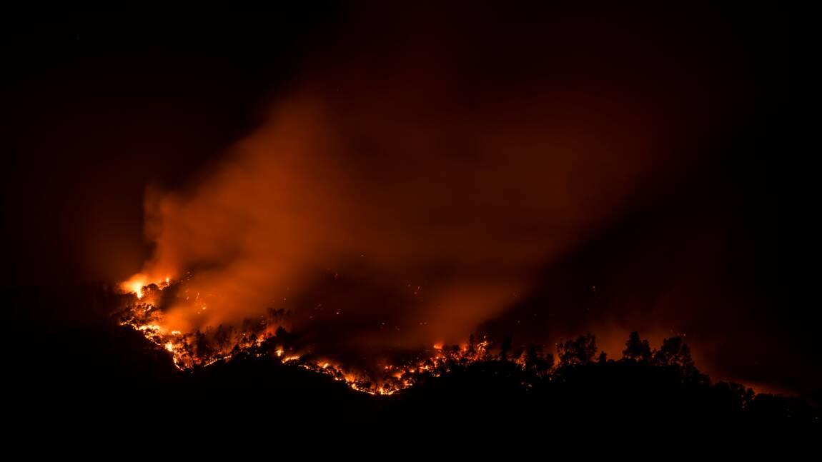 Californie: les célèbres vignobles de la Napa Valley en proie aux flammes