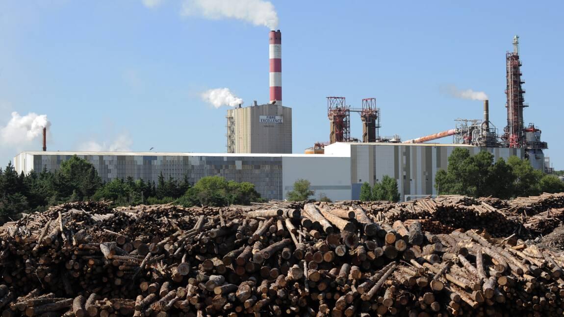 L'Etat au chevet d'une usine de pâte à papier dont dépendent des milliers d'emplois