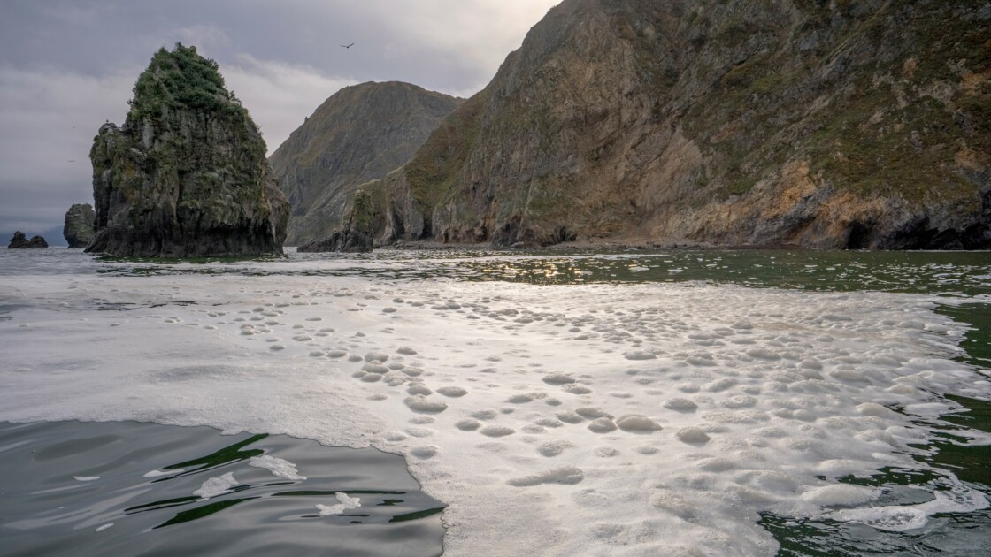 Kamtchatka: une nappe de pollution de 40km de long à la dérive sur l'océan