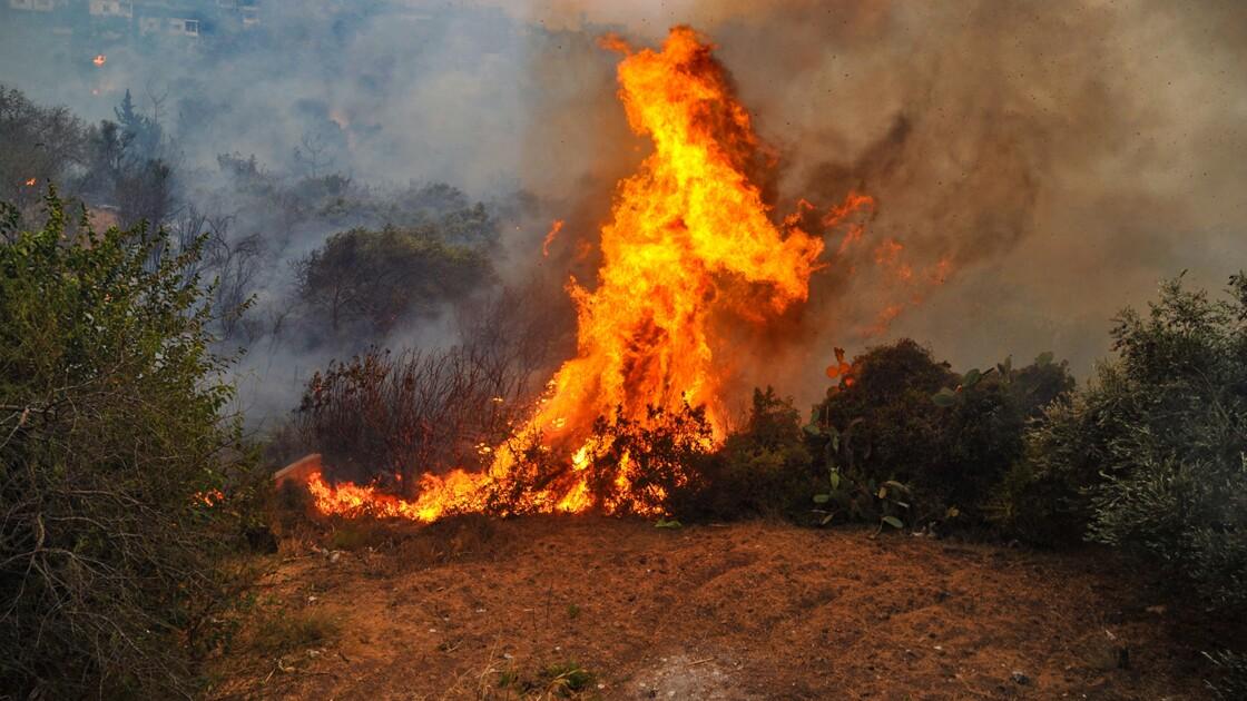 Des feux de forêt font rage en Syrie et au Liban, trois morts