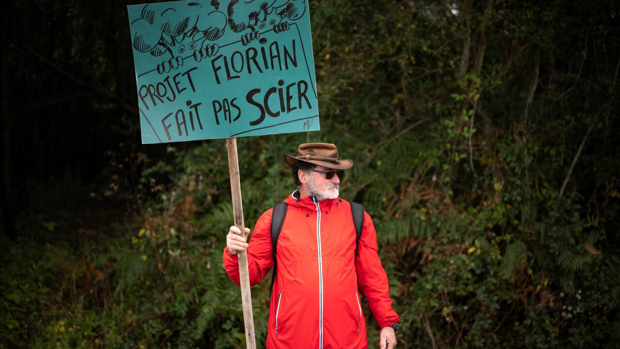 Manifestation dans les Pyrénées contre un projet d'une méga-scierie