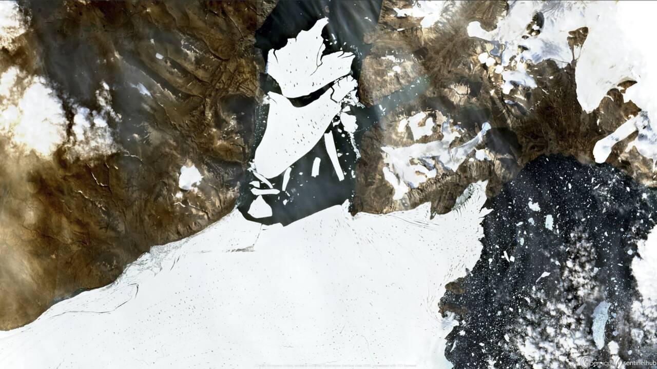 Banquise: la plus grande expédition en Arctique pousse un cri d'alarme