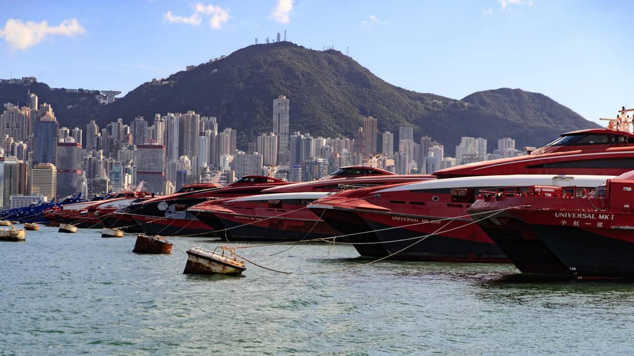A Hong Kong, les dauphins roses de retour avec la baisse du trafic maritime