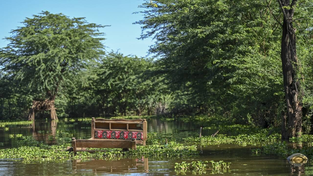 """""""A la vitesse du vent"""", les lacs kényans atteignent des niveaux alarmants"""