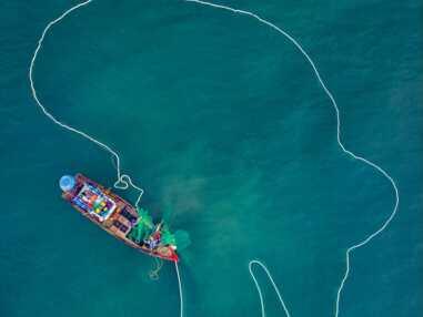 Aerial Photography Awards : découvrez les plus belles photos aériennes