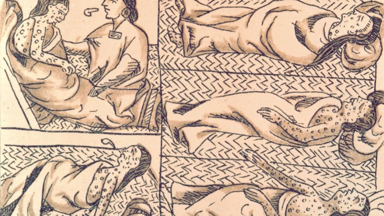 La variole, alliée inespérée des conquistadors espagnols