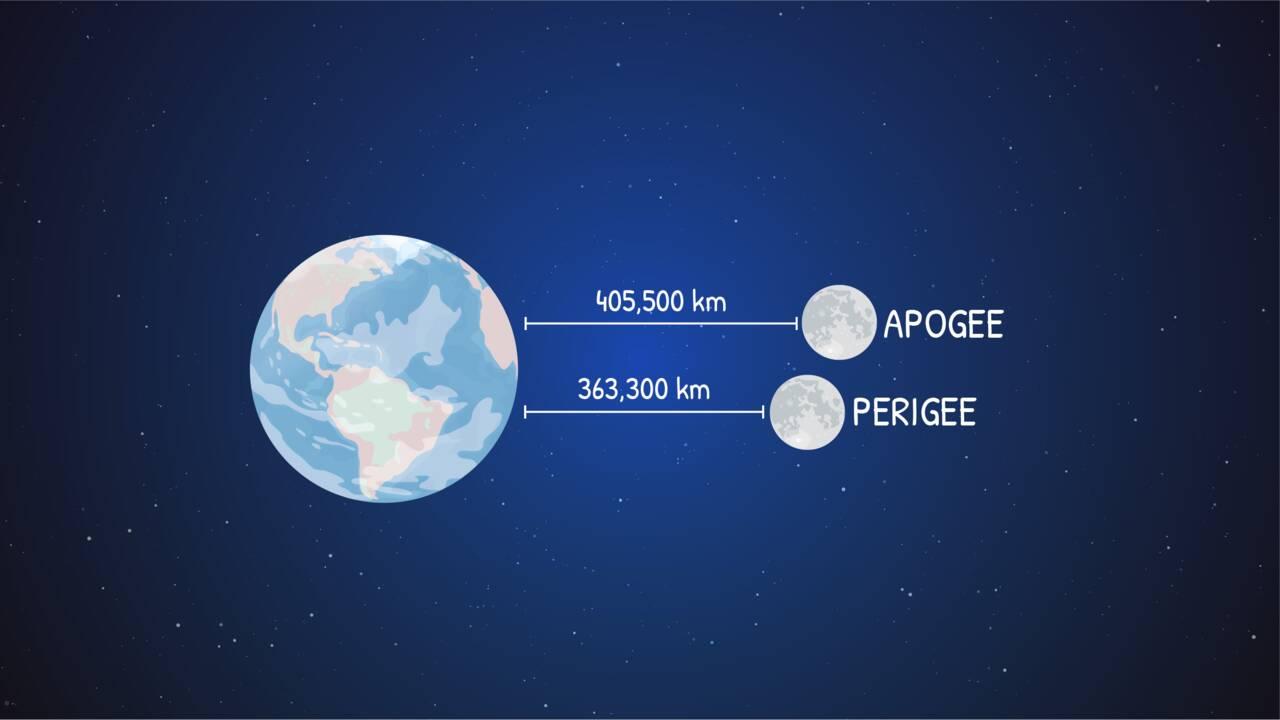 """""""Lune bleue"""" : le soir d'Halloween, le ciel sera illuminé par une pleine lune rare"""