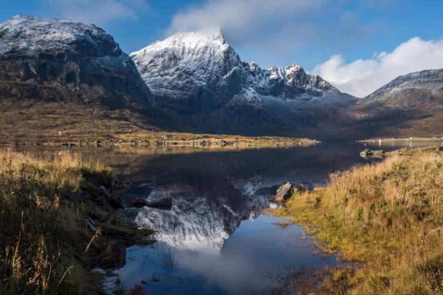 Scottish Highlands, Ecosse