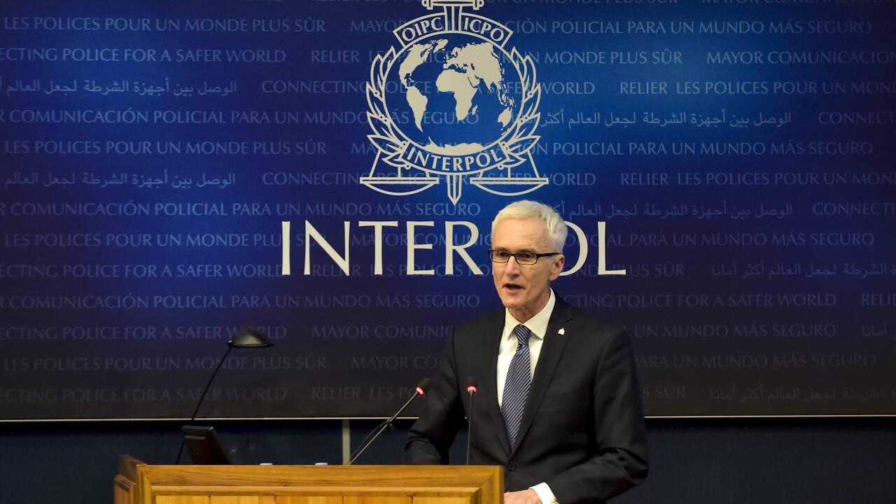 Trafic d'espèces sauvages : 45500 animaux et plantes saisis par Interpol dans 103 pays