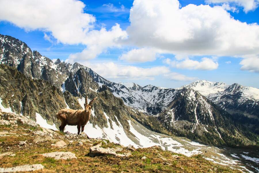 Le parc du Mercantour, dans les Alpes-Maritimes