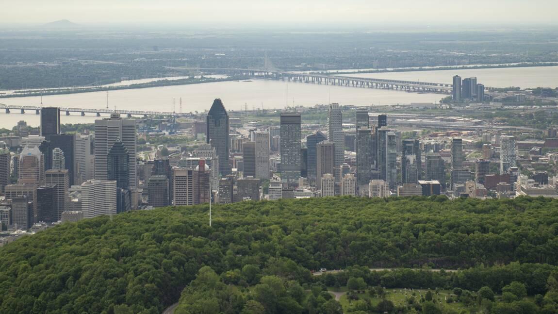 """A Montréal """"record absolu"""" de températures avec 22,4 degrés en novembre"""