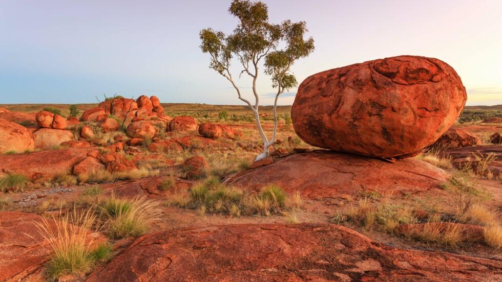 """""""We are young and free"""" : pourquoi l'hymne national fait polémique en Australie"""