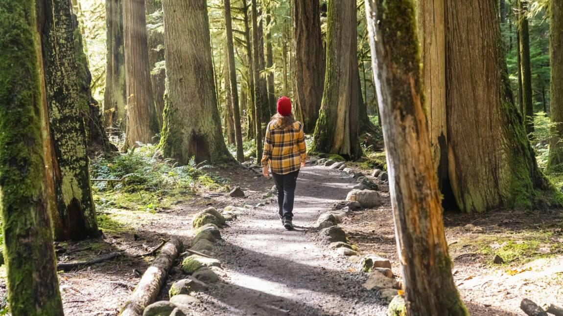"""""""Laissez-nous retrouver la nature"""" : Chilowé lance un appel pour alléger les mesures de confinement"""