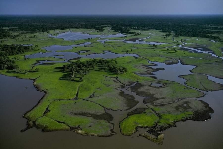 Une incroyable biodiversité qui se reconstitue au fil des années