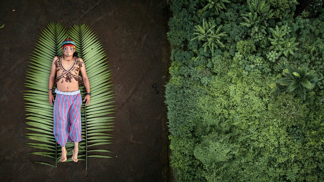 """""""Graines de résistance"""" : qui sont les défenseurs autochtones de l'Amazonie ?"""